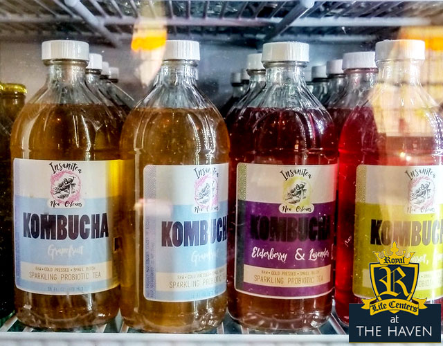 kombucha - drink kombucha - kombucha in recovery? - will kombucha get you drunk? - can I drink kombucha if I'm in recovery? - kombucha in recovery - recovery from drugs and alcohol - recovering alcoholic - alcohol content